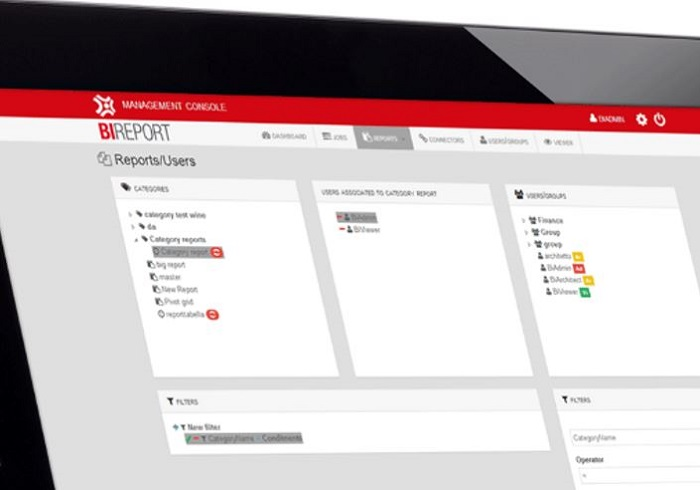 BIREPORT® web platform to generate reports from any datasource